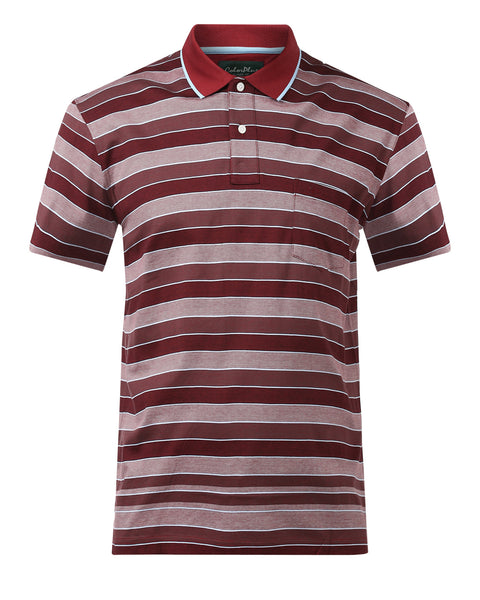 ColorPlus Maroon Classic Fit T-Shirt