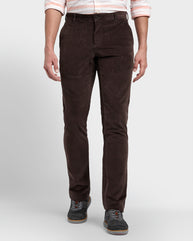ColorPlus Brown Regular Fit Trouser