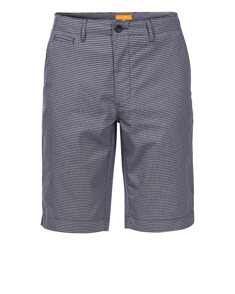 ColorPlus Navy Regular Fit Shorts