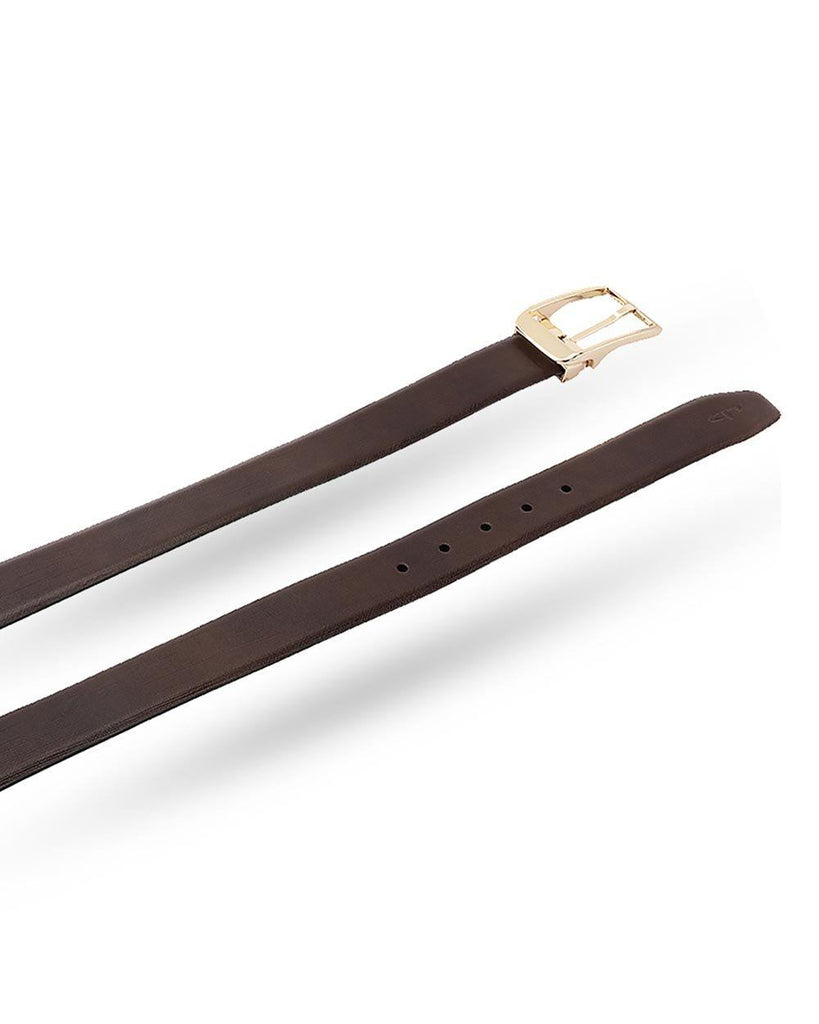 ColorPlus Brown Leather Belt