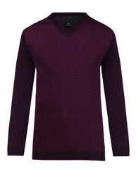 Park Avenue Purple Regular Fit Sweater