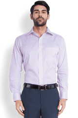 Park Avenue  Purple Regular Fit Shirt