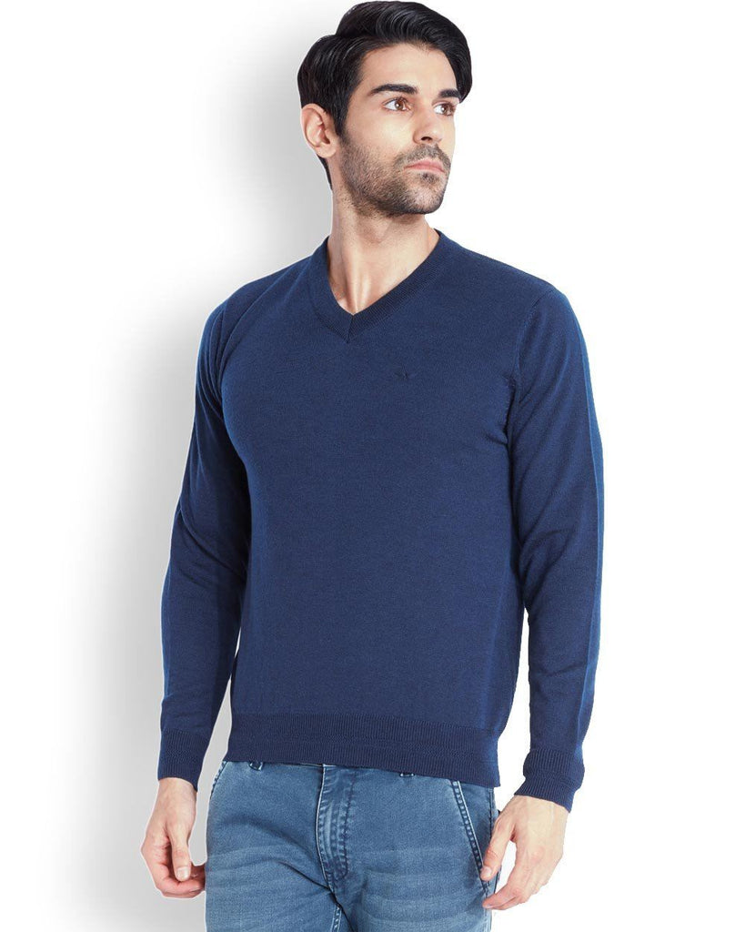 Park Avenue  Blue Solid Sweater
