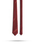 Park Avenue Dark Maroon Regular Fit Neck Tie
