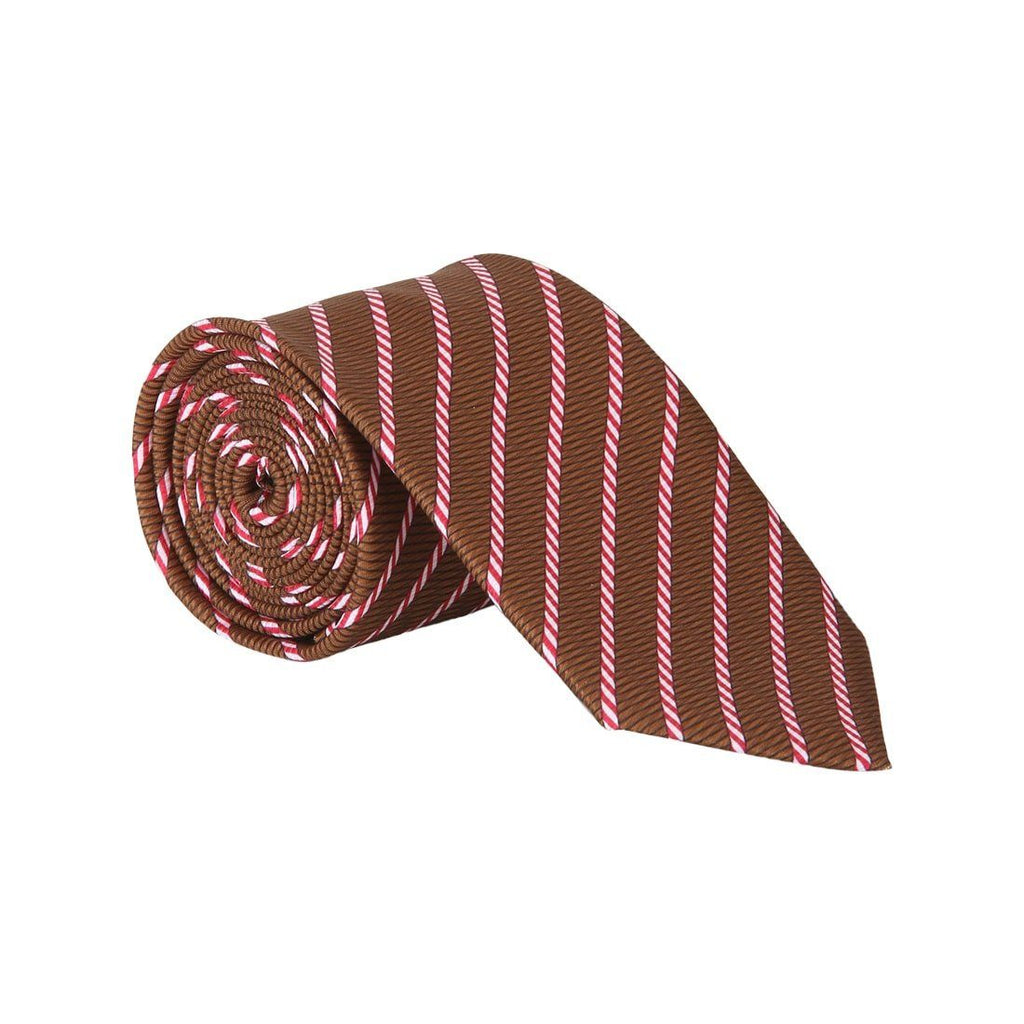 Park Avenue Brown Polyester Ties