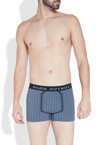 Park Avenue  Blue Slim Fit Trunk