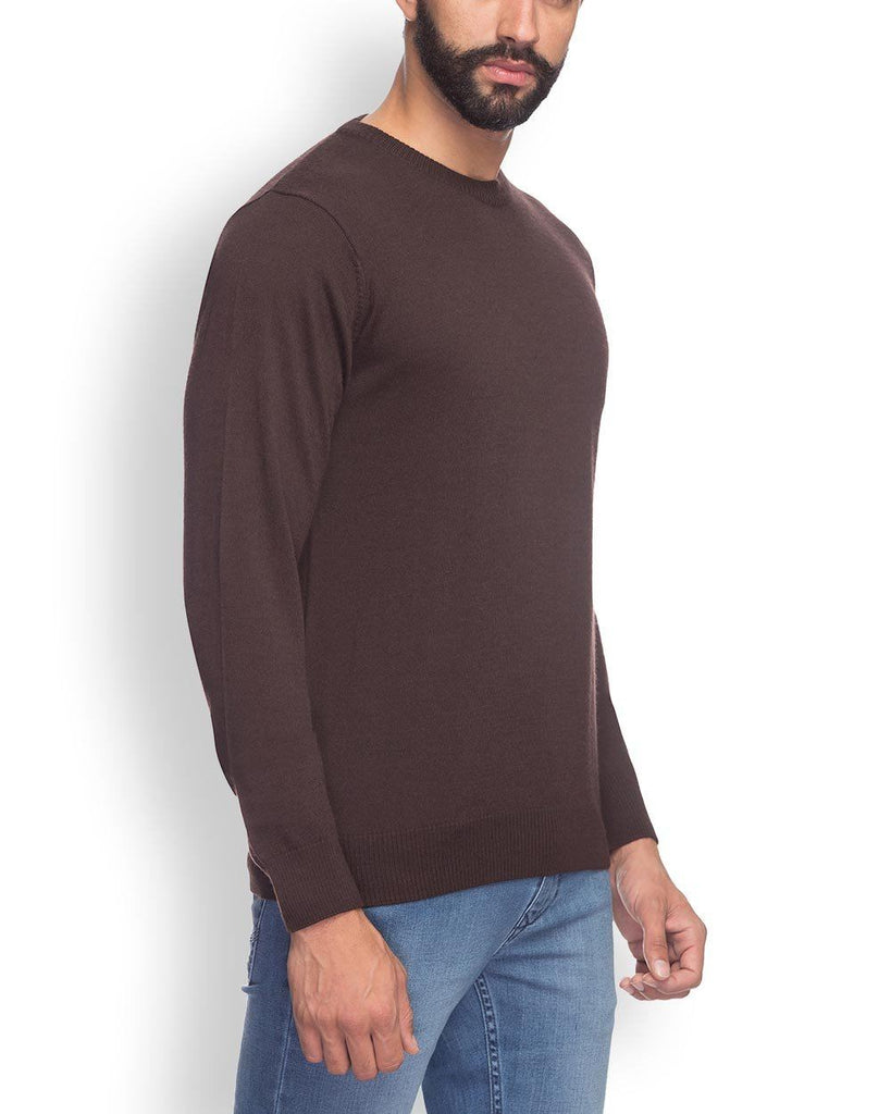 Raymond  Brown Solid Sweater
