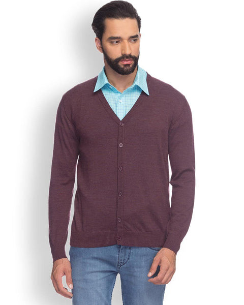 Raymond  Purple Solid Sweater