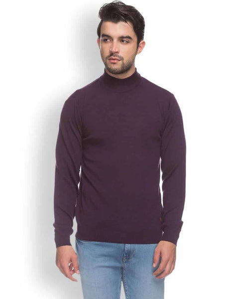 Raymond  Purple Contemporary Fit Sweater