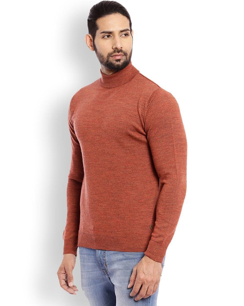 Raymond Dark Brown Solid Sweater