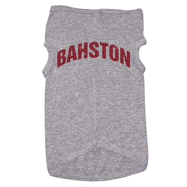 "A dog shirt that reads ""Bahston"""