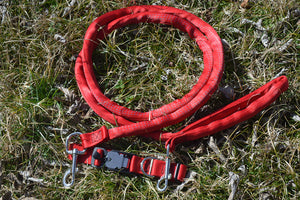 Padded,Dual Snap, Leash Harness & Magnetic Locking Safety Collar Combo