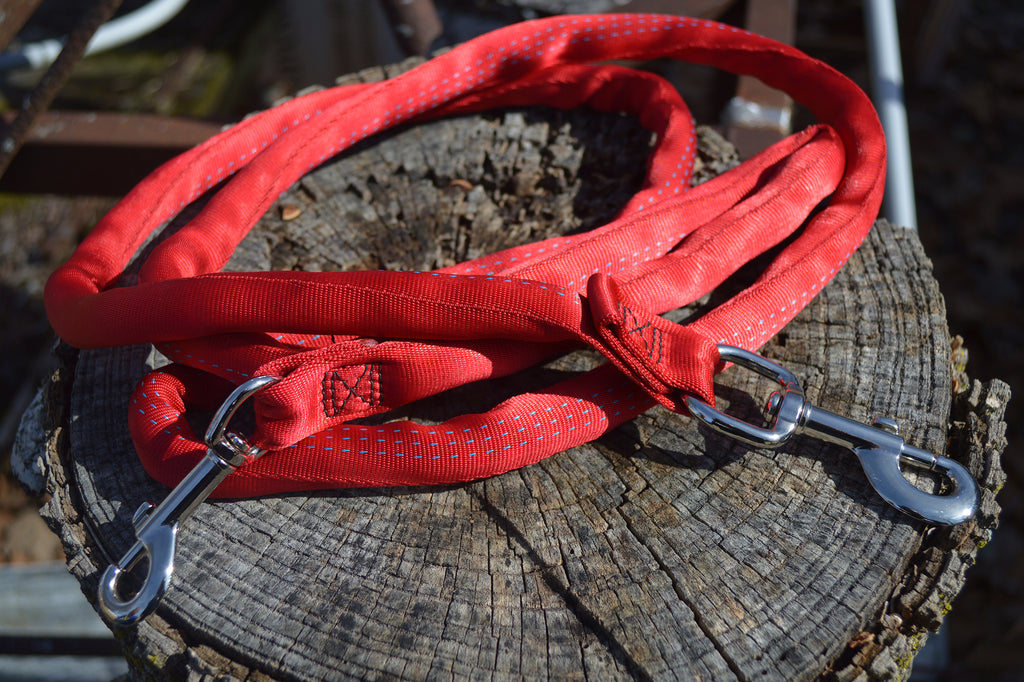 Best Seller - 6 FT Leash Harness