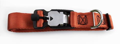 Magnetic Locking Dog Safety Collar - Cooper