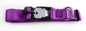 Magnetic Locking Dog Safety Collar - Purple