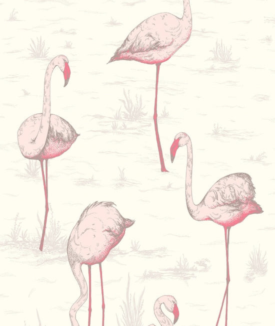 Flamingos 1 The Contemporary Collection
