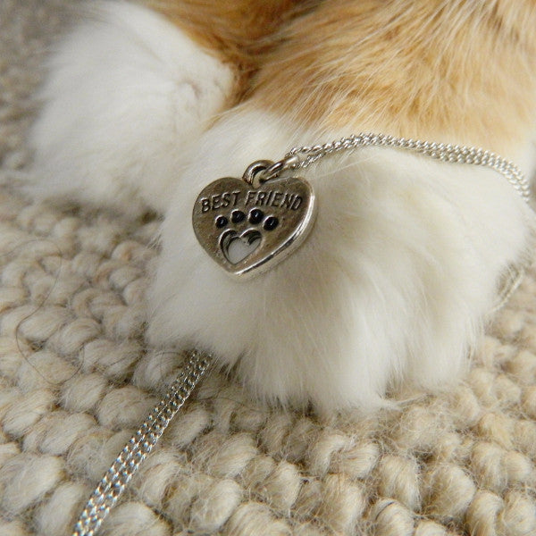 BFF Pet Necklace