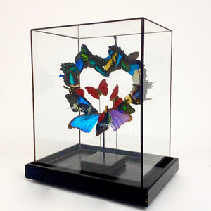 Heart butterfly sculpture in leaded glass case.