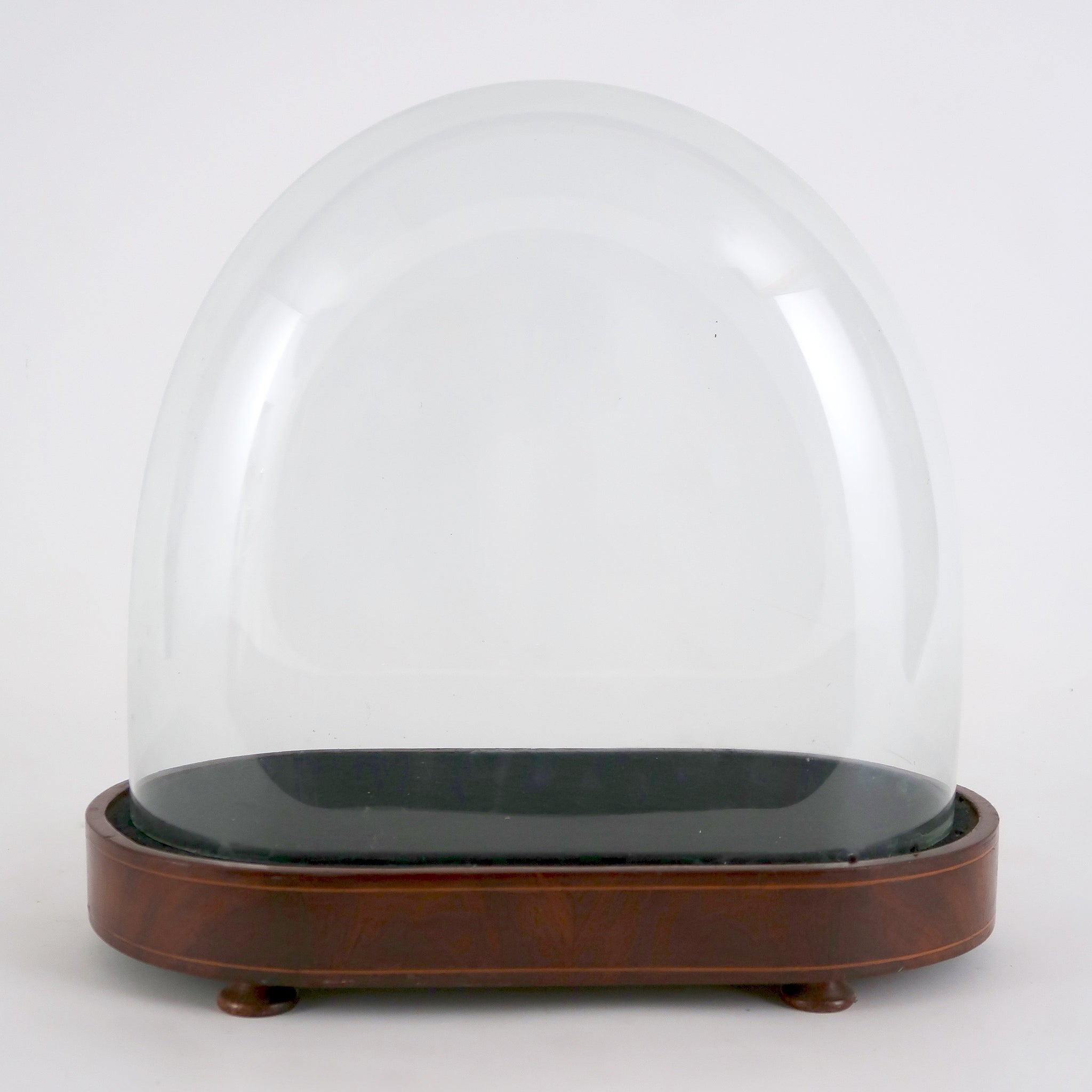 Large oval victorian glass dome.