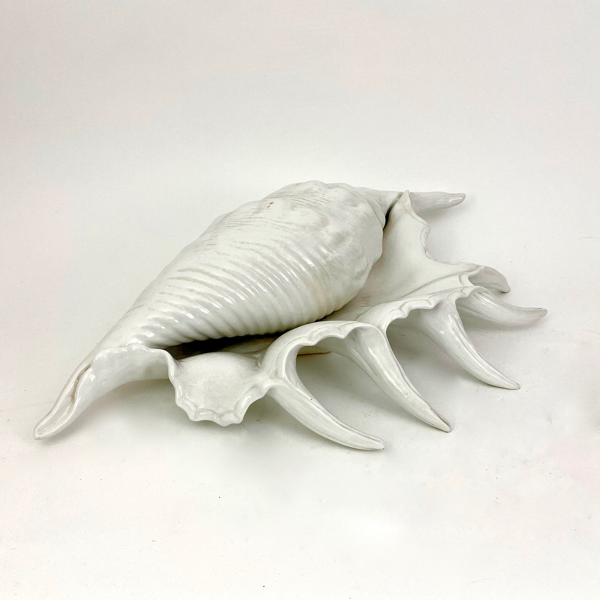 Large vintage Italian ceramic seashell sculpture .