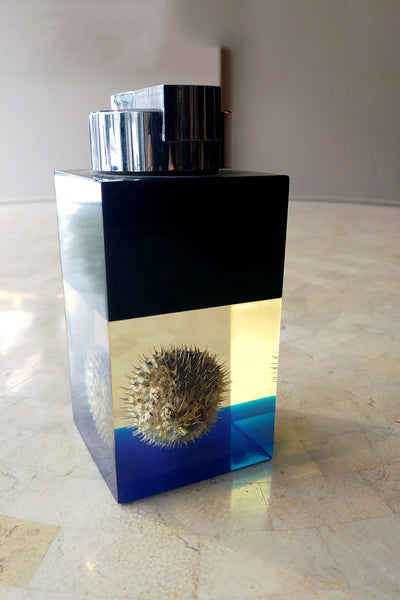 Unusual Lighter with Encased Pufferfish