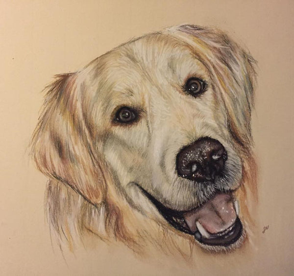 Place a 20% Deposit for a Pastel Commission