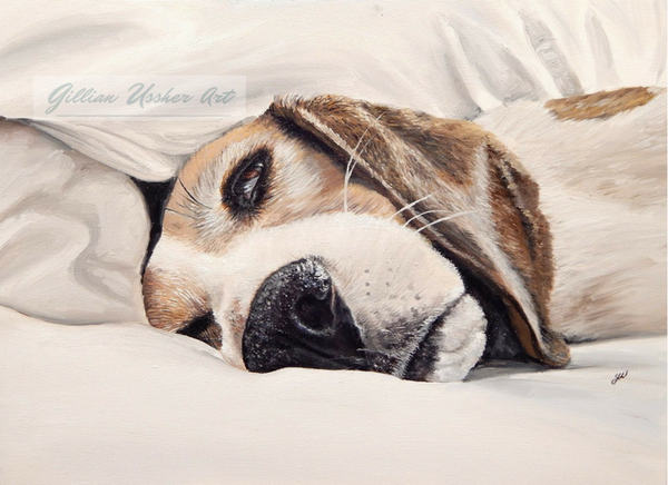 Sleepy Beagle Fine Art Giclee Print