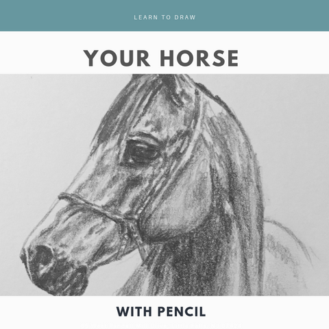 Learn to Draw your Horse with Pencil