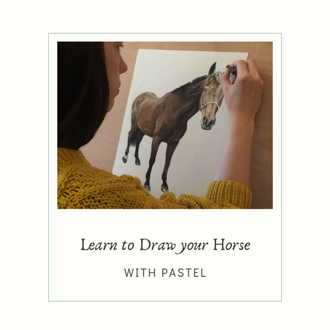 Learn to Draw your Horse with Pastel