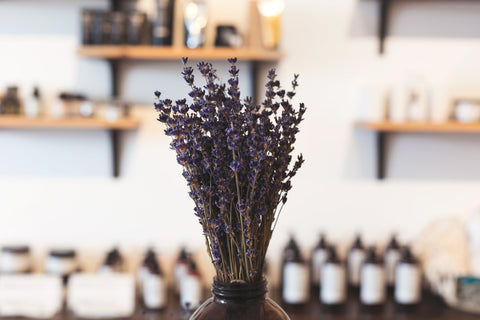 Lavender in Shop