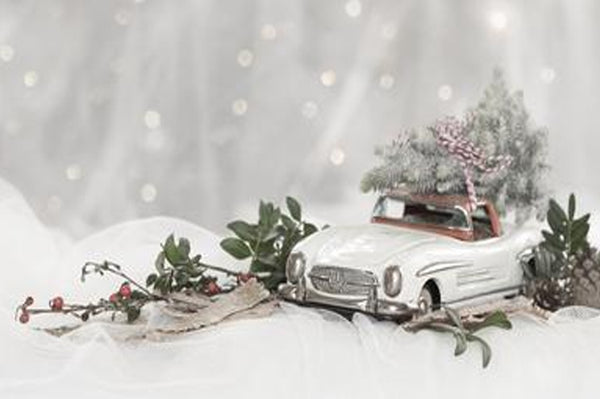 10 Cool Gifts for Car Lovers!