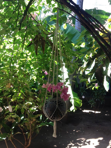 Macrame Plant Hangers, Hanging Planter, Plant Hangers, Hanging Plant Holders, Hanging Plants, Macrame Plant Holder, Hanging Basket Plants, Hanging Basket - Socially Positive - Mission Hammocks - 1