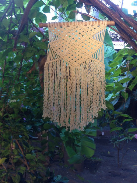 Macrame Plant Hangers, Hanging Planter, Plant Hangers, Hanging Plant Holders, Hanging Plants, Macrame Plant Holder - Mission Hammocks - Mission Hammocks - 2