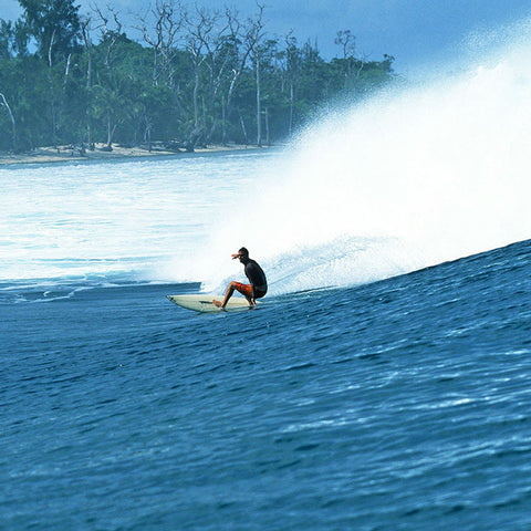 Matt Warshaw's History of Surfing