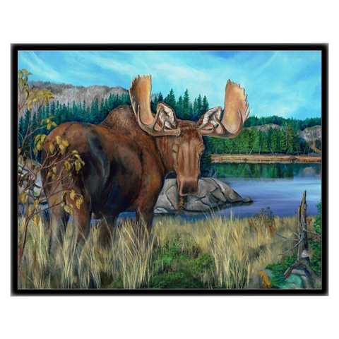 Autumn Moose in Black Frame Canvas Standout 11' x 14""