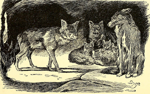 the jungle book wolves
