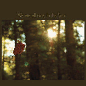 Various Artists - We Are All One, In the Sun: A Tribute To Robbie Basho - LP