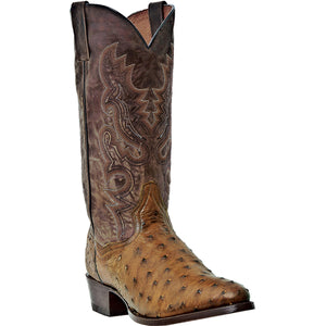 DAN POST MEN'S OSTRICH TEMPE SADDLE BROWN - CHOCOLATE- back40trading2 - 1