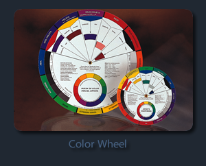 COLOR WHEEL ESPANOL