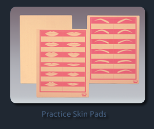PRACTICE SKIN PAD- OUTLINE WITH LIPS AND BROWS