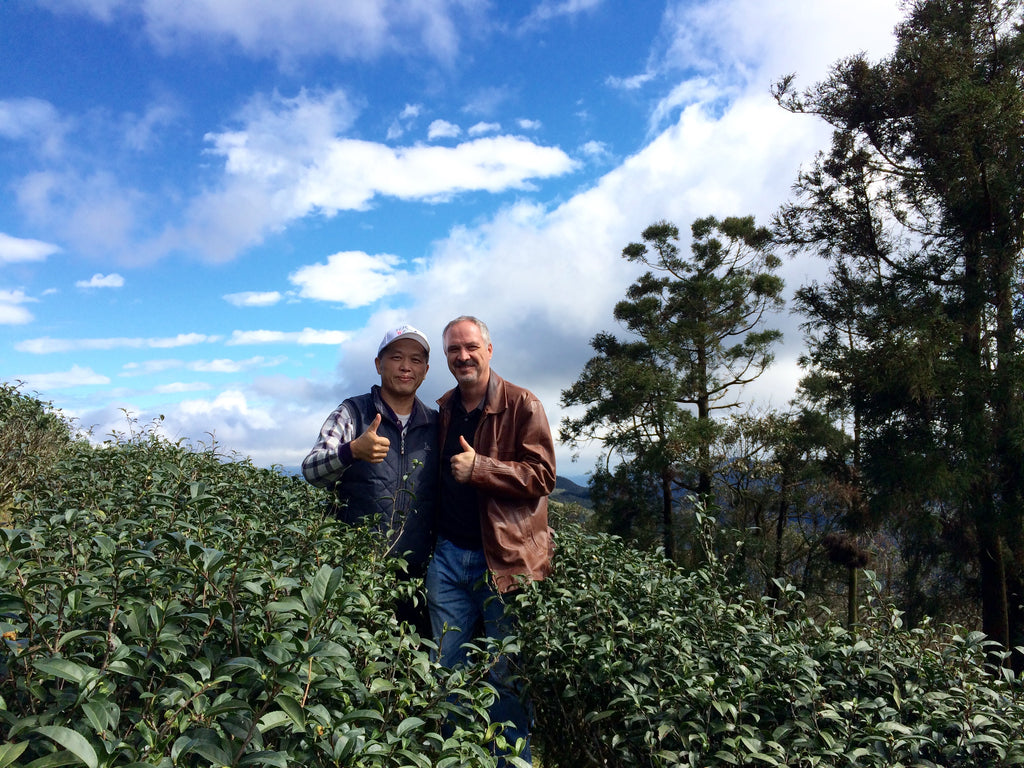 Oriental Beauty Oolong Award Winner Is Worth More Than Gold