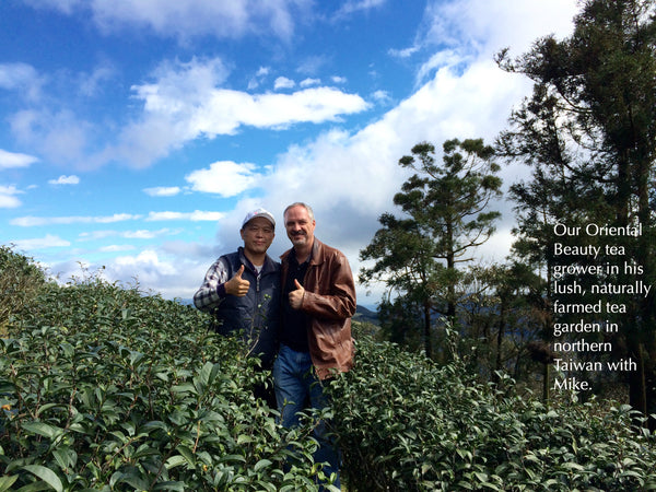 Bai Hao Oolong grower in his tea garden with Mike in Taiwan
