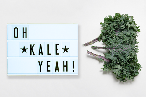 quotes for foodies kale my cinema lightbox