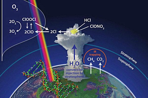 Ozone and Vapor Extraction