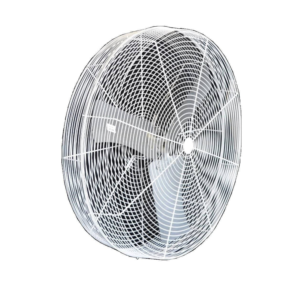 White Basket Air Circulator Fan 36 inch 12627 CFM 1 Speed 115V/230V 36B8WN
