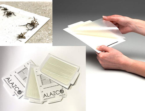 6 ALAZCO Glue Traps - Excellent Quality Glue Boards Mouse Trap Bugs Insects Spiders Cockroaches Trapper & Monitor NON-TOXIC