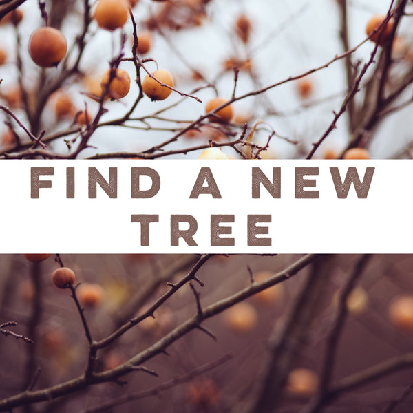 Find a new tree.