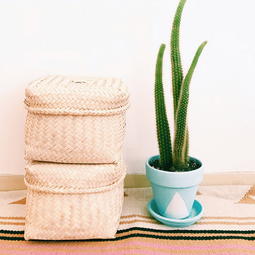 Oaxacan Palm Basket