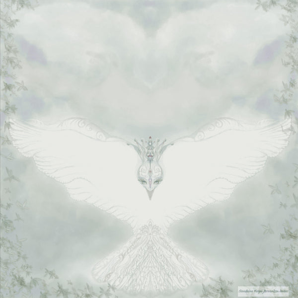 Set of 5 Jewish Greeting Cards- The  blessing dove-6.29 x 12.2 inches- pearly paper 300gr