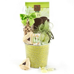 Pistachio Purim Planter Gift Basket
